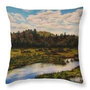 Upper Sacandaga River Throw Pillow