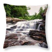 Upper Swallow Falls Close Up Throw Pillow