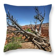 Uprooted - Bryce Canyon Throw Pillow