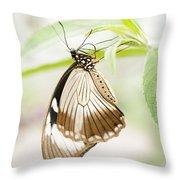 Upside Down Throw Pillow by Anne Gilbert