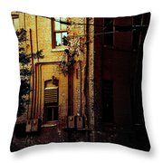 Urban Alley Throw Pillow