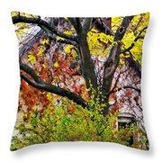 Urban Cottage Throw Pillow