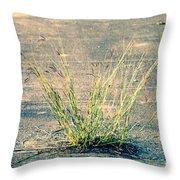 Urban Grass Throw Pillow
