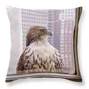 Urban Red-tailed Hawk Throw Pillow