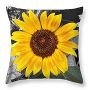 Urban Sunflower Throw Pillow