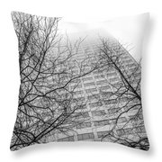 Urban V Nature  Throw Pillow