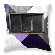 Urban Window- Photography Throw Pillow