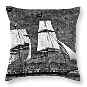 Us Brig Niagra Texture Overlay Bw Throw Pillow