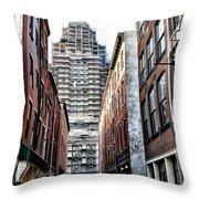 Us Customs House Philadelphia Throw Pillow