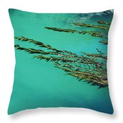 Usa, California, Seaweed Floating Throw Pillow