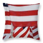 Usa Flags 02 Throw Pillow