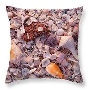 Usa, Florida, Sanibel Island, Gulf Throw Pillow