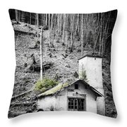 Usine Electrique Au Naturale Throw Pillow