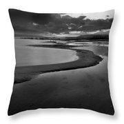 Utah Lake Shoreline In Monochrome Throw Pillow