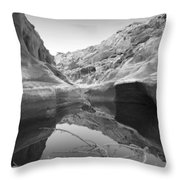 Utah Outback 10 Throw Pillow
