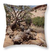 Utah Tree Throw Pillow