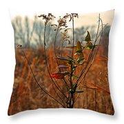 Autumn Grass6277 Throw Pillow