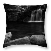 Uvas Throw Pillow