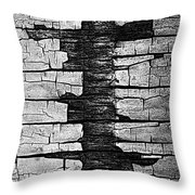 V Na Exposed Cont L Bw Throw Pillow
