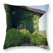 V Sattui Winery Vintage View Throw Pillow by Michelle Wiarda