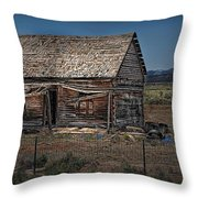 Vacant Homestead Throw Pillow