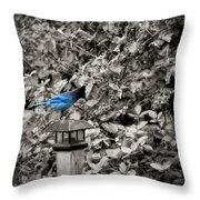 Vagabon Blue Bird Throw Pillow