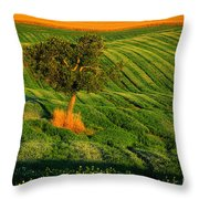 Val D'orcia Tree Throw Pillow