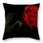 Valentine's Day Velvet Rose Throw Pillow