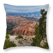 Valley Colors Throw Pillow