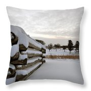Valley Forge Winter 8 Throw Pillow