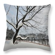 Valley Forge Winter 9 Throw Pillow