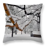 Valley Forge Winter 9817 Throw Pillow