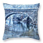 Valley Green Ducks In Winter Throw Pillow