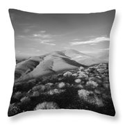 Valley Height Throw Pillow