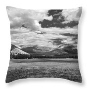 Valley In Yosemite Throw Pillow