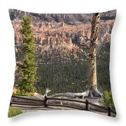 Valley Light Throw Pillow