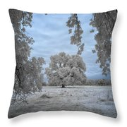 Valley Oak #3b Throw Pillow