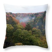 Valley Of Color Throw Pillow