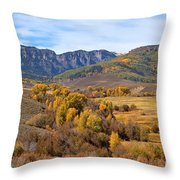 Valley Of Gold Throw Pillow