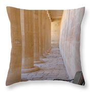 Valley Of The Kings Throw Pillow