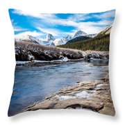 Valley Of The Moose Throw Pillow