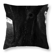Valley Of The Oak Throw Pillow