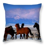 Valley Of The Wild Horses  Throw Pillow by Jeanne  Bencich-Nations