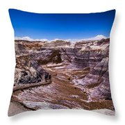 Valley Path Throw Pillow