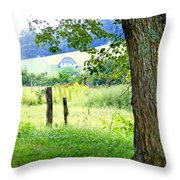 Valley View Along Flat Creek Rd Throw Pillow