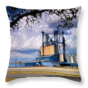 Valley View Mill Throw Pillow
