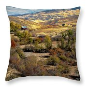 Valley View Throw Pillow by Robert Bales