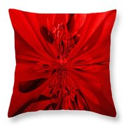 Values In Red Throw Pillow