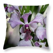 Vanda Emma Van Derventer 6906 Throw Pillow