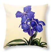 Vanda Sausai Blue Orchid Throw Pillow